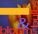 blooms & bulbs logo